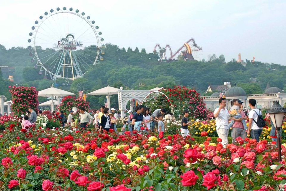 Everland Park Korea