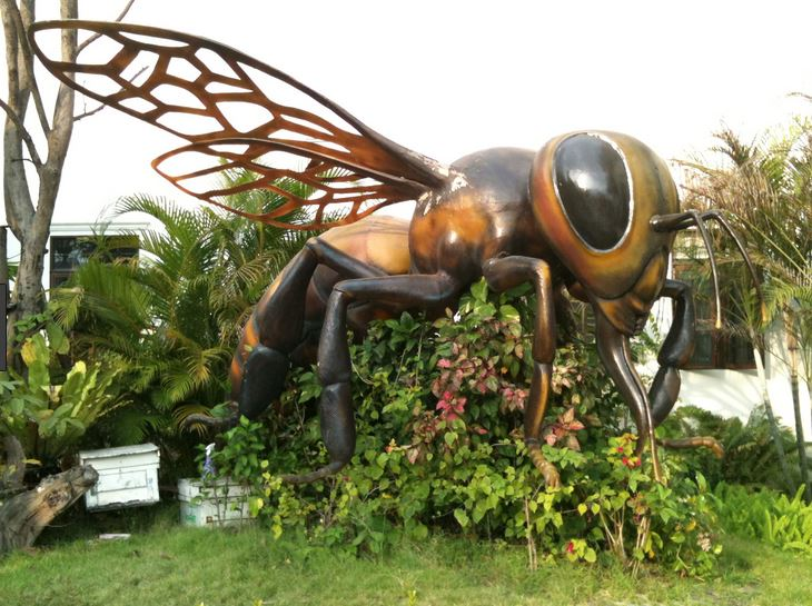 Bee Farm Pattaya